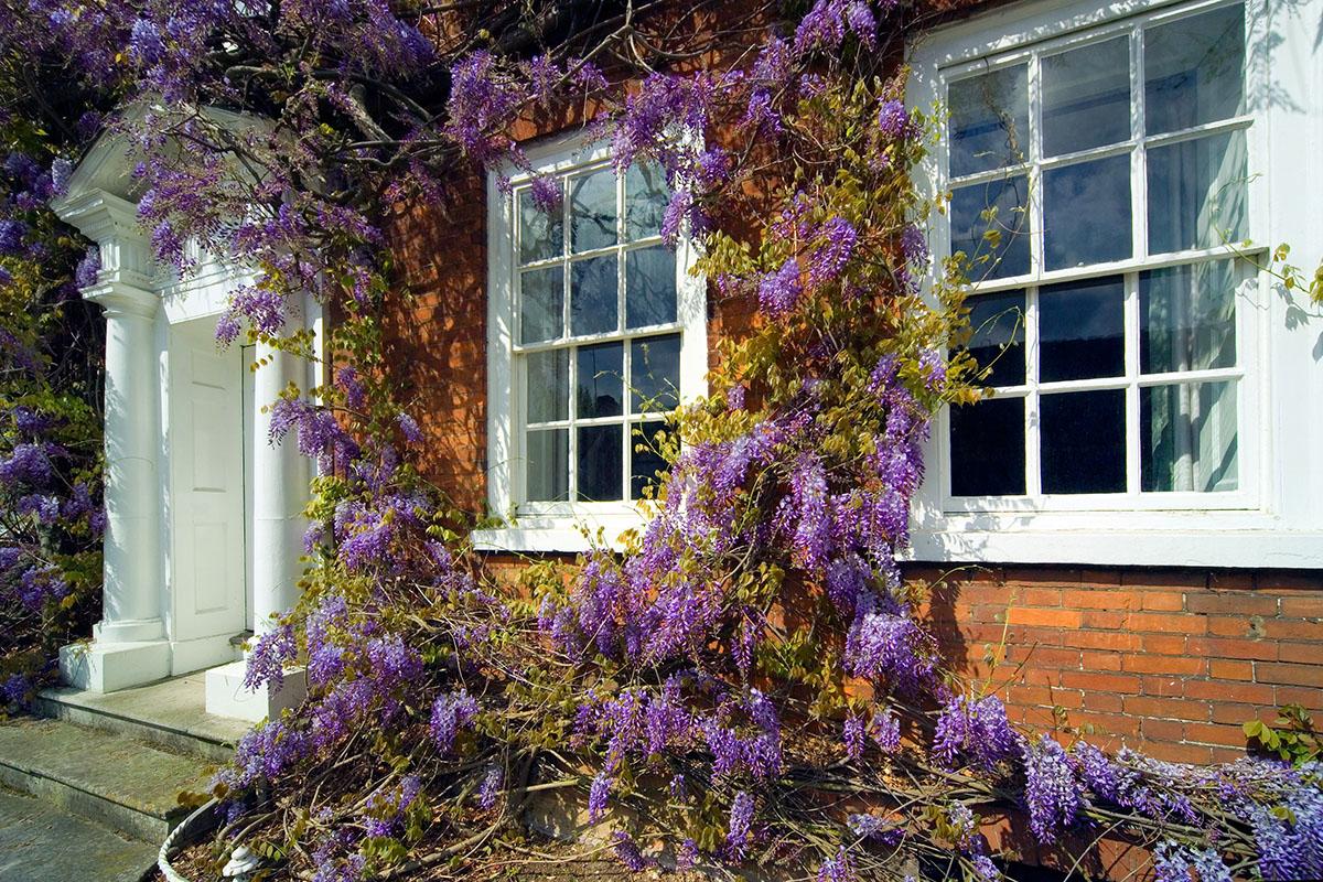 sash window refurbishment reading berkshire london