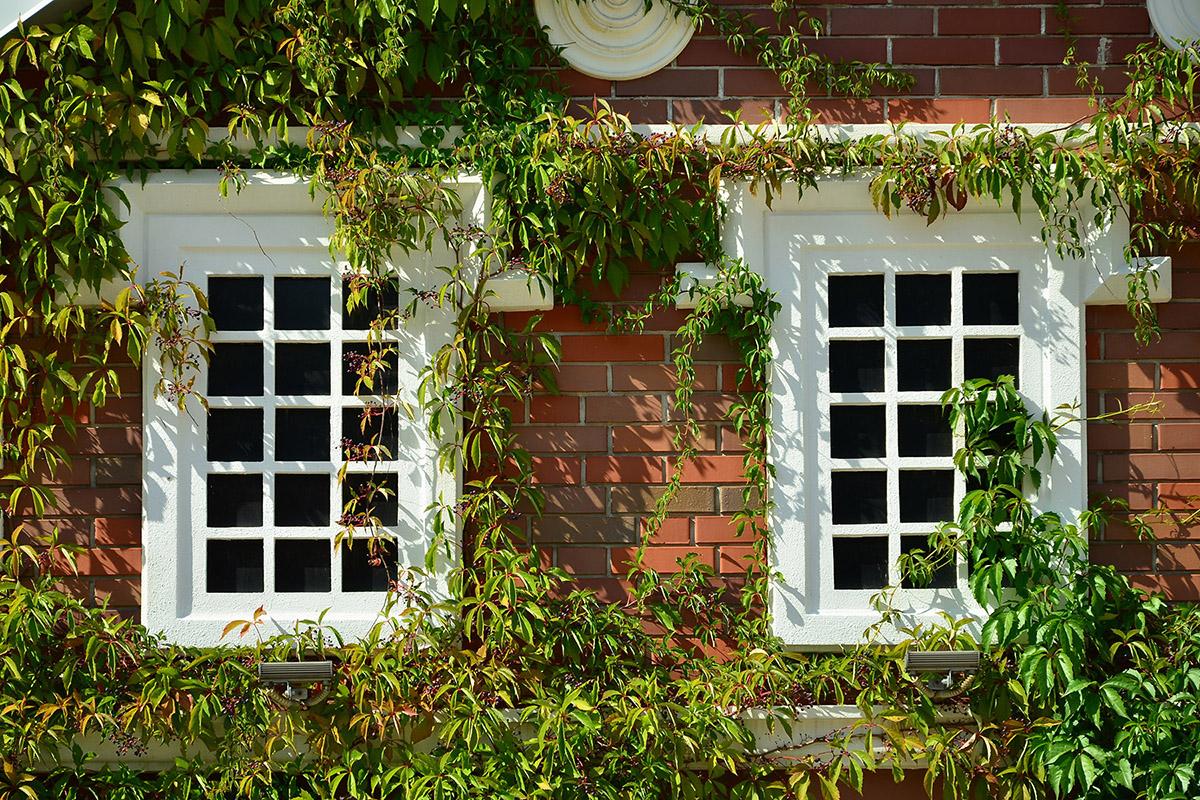 sash window repairs and restoration